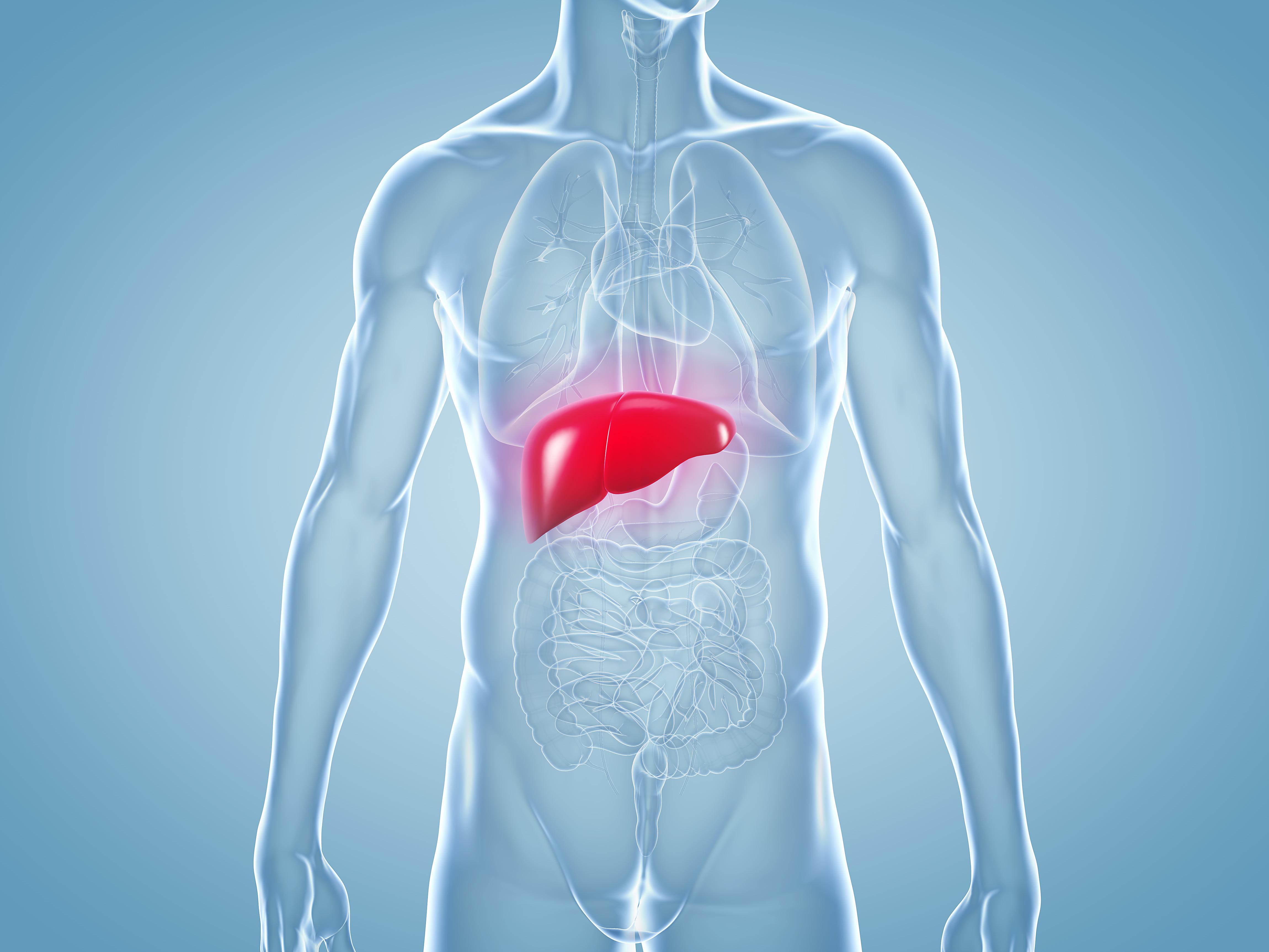 Leberkrebs: heimtückische Folge von Hepatitis, Alkoholismus und Co.